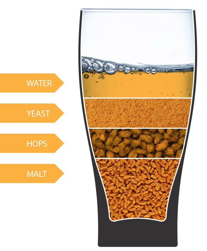 What is in beer??